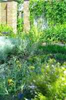 101209_2_Rolly_Englishgarden.jpg